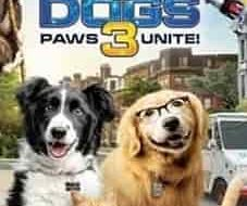 Cats-&-Dogs-3-Paws-Unite-2020